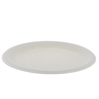 "EarthChoice 10"" Bagasse Plate"